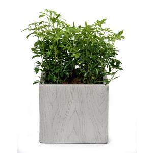 Pot carré haut moyen large LIA gris beige 34,68L 313896