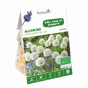 Bulbe allium mount Everest bio blanc botanic® x 3 321931