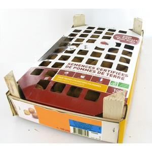 Pommes de terre Primlady bio calibre 0001, 100 plants 322760