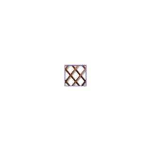 Treillis extensible Trelliwood en bois, 100 x 200 cm 330796