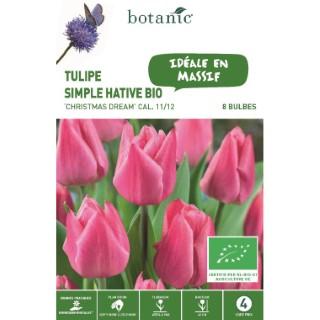 Bulbe tulipe triomphe christmas dream rose bio botanic® x 8 334607