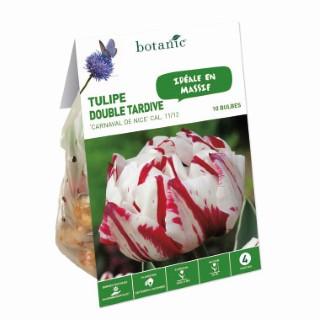 Bulbe tulipe double hative carnaval de Nice bicolore botanic® x10 334663