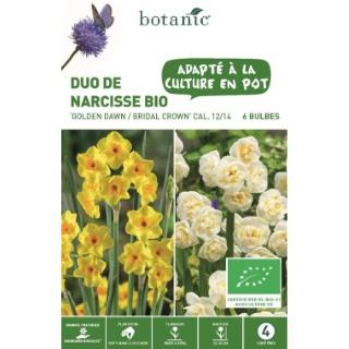 Bulbe duo de narcisse golden dawn et bridal crown botanic® x 8 334718