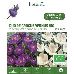 Bulbe duo de crocus vernus bleu et blanc bio botanic® x 15 334726