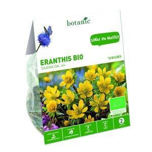 Bulbe eranthis cilicica jaune bio botanic® x 10 334937