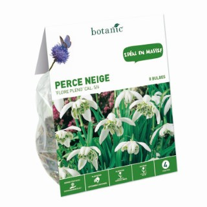 Bulbe perce neige galanthus flore pleno blanc botanic® x 8 334988