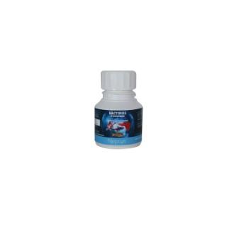Bacteries vivantes d'entretien 100 ml NEPTUS 335107