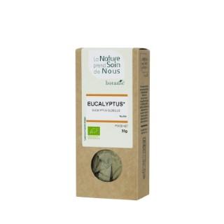 Eucalyptus pour infusion 335544