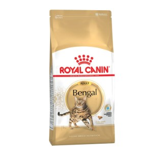 Croquettes pour chat Bengal adulte Royal Canin - 400 gr 337421