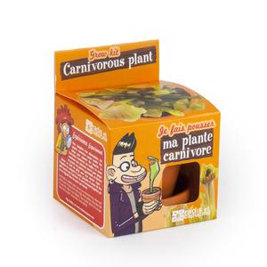 Kit Plantes carnivores avec pot et coupelle terre cuite Ø8 cm (Âge minimum 3 ans) 341075