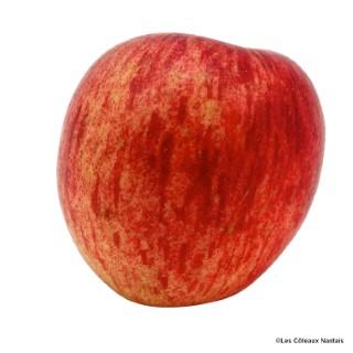 Pomme Fuji - Prix au kg 361630