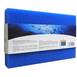 Mousse bleue pores fins 365970
