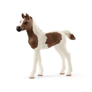 Figurine Poulain Pintabian Série horse Club 8,1x2,2x7,9 cm 367503