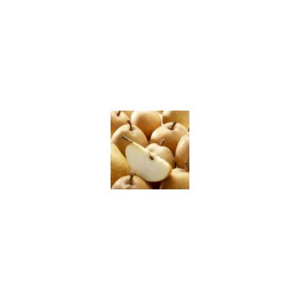 Poirier Fertilia Delbard® Delwilmor racines nues gobelet 441005