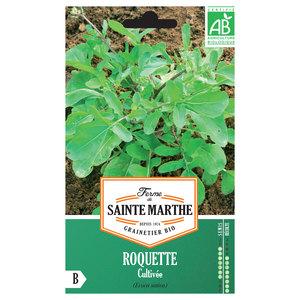 Roquette Cultivée 382779