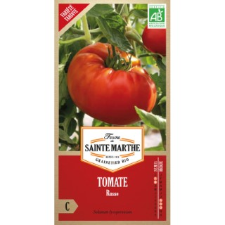 Tomate Russe 382797