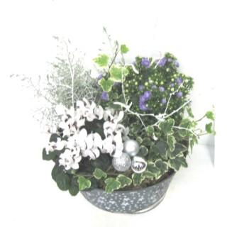 Composition de Noël. Pot zinc vert 384824