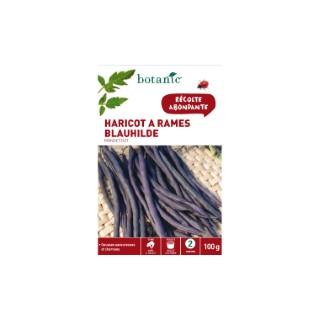 Semences pour haricot à rames de la variété blauhilde 100 g - 2 m 386261