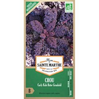 Graines de Chou Curly Kale Roter Grunkohl bio en sachet 386717