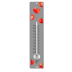 Thermomètre gris en tôle peinte à motif Tomates rouges 30 cm 388236