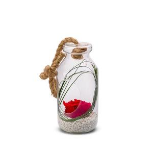Verrine bottle rouge taille L Ø 12 x H 25 cm 390581