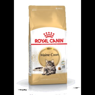 Croquette chat 2kg Maine Coon Royal Canin 393398
