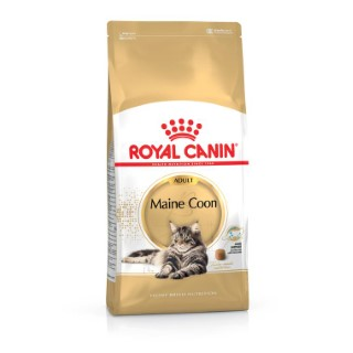 Croquette chat 4kg Maine Coon Royal Canin 393399