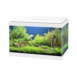 Aquarium Aqua 20 Light blanc 17L 39537