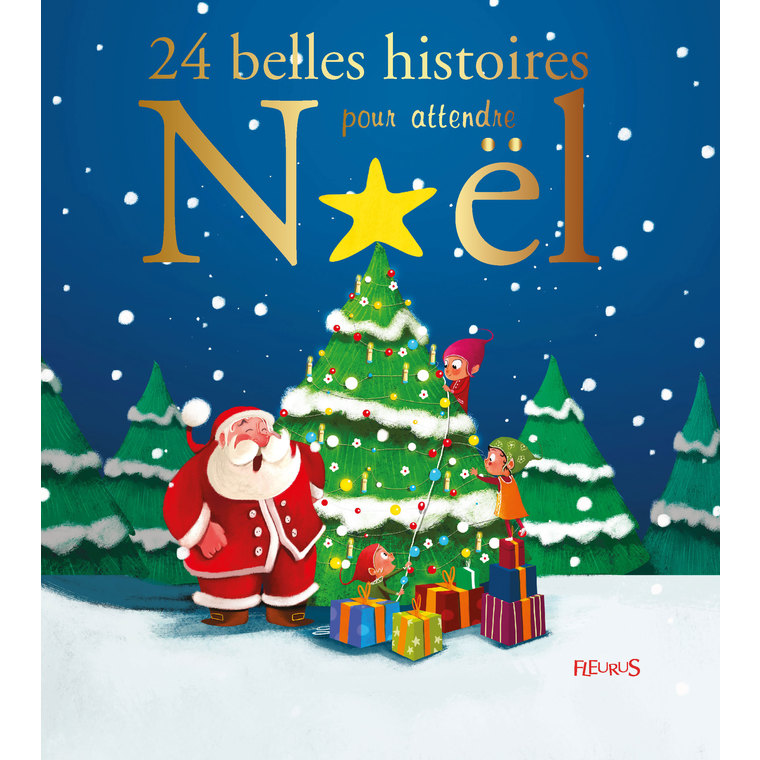 Livre de 24 belles histoires pour attendre Noël 310018