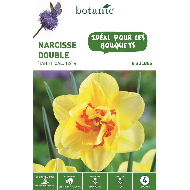 Bulbe narcisse double Tahiti jaune botanic® x 8 334708