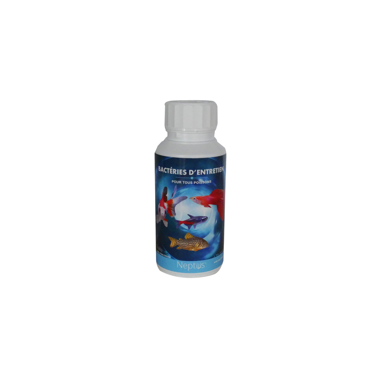 Bacteries vivantes d'entretien 250 ml NEPTUS 335108