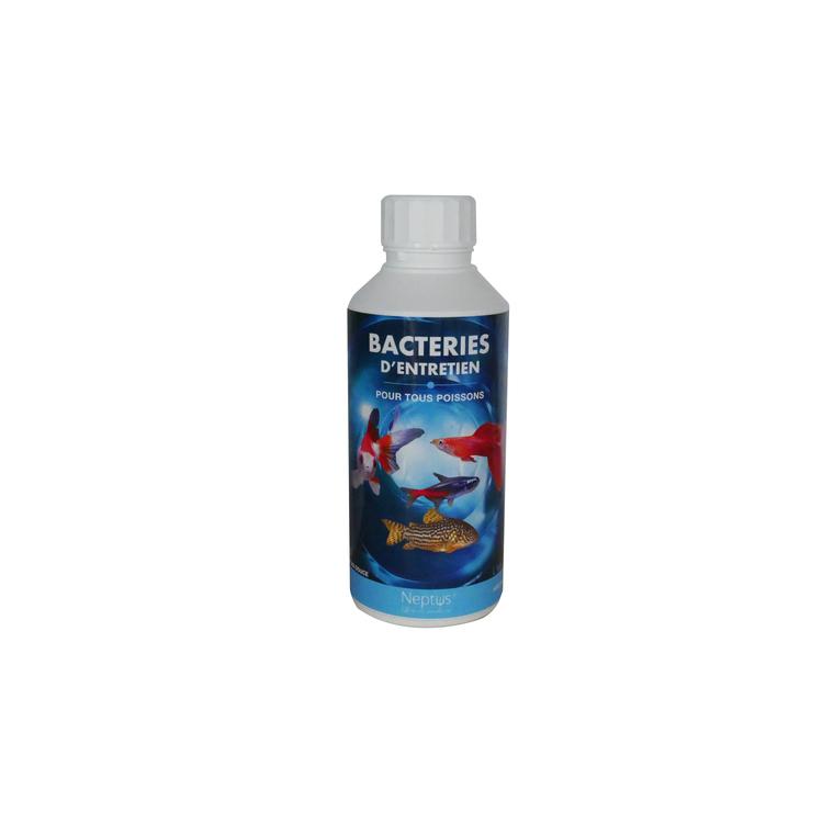 Bacteries vivantes d'entretien 500 ml NEPTUS 335109