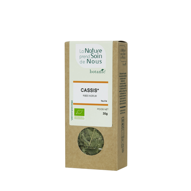 Cassis feuille pour infusion 335540