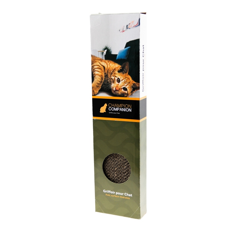 Scratcher Single 50x12x5 cm 336230