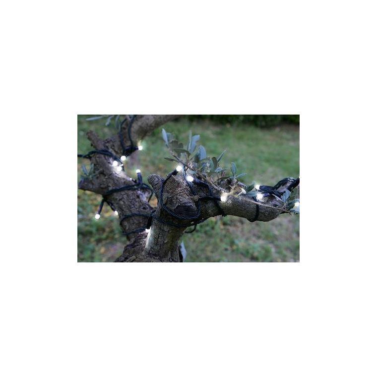 Guirlande lumineuse extérieure animée blanc pur à LED solaire 1,2x20 m 344883