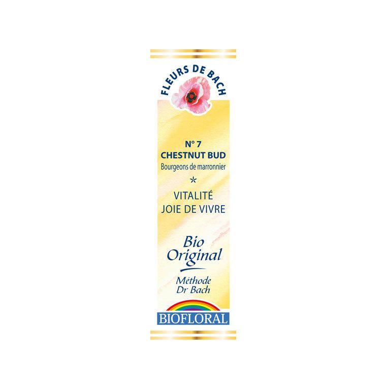 Élixir n°7 Biofloral de bourgeon de marronnier en flacon de 20 ml 356124