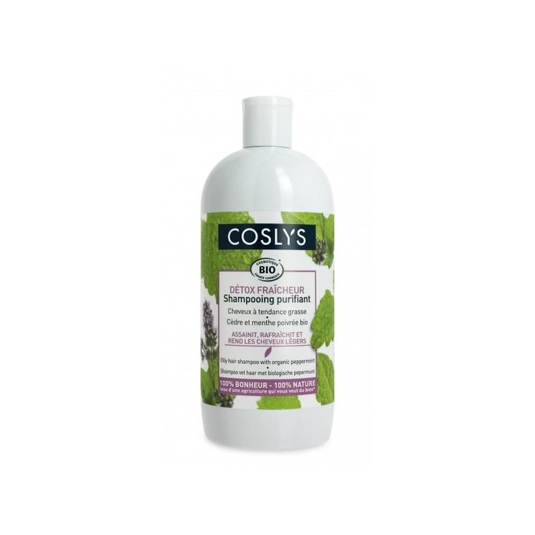 Shampoing cheveux gras 500 ml 359768
