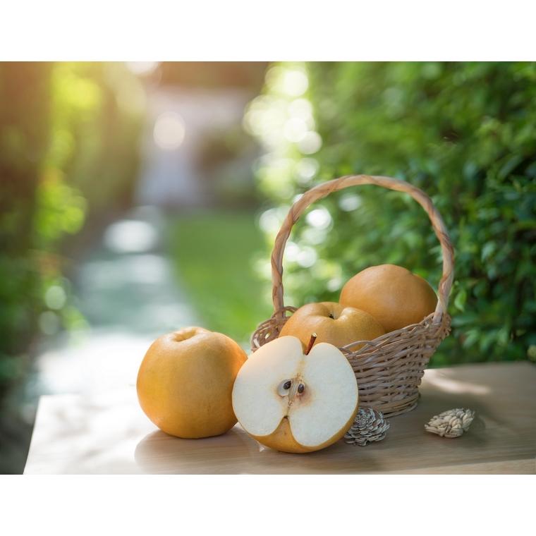 Pomme Canada Grise - Prix au kg 361625