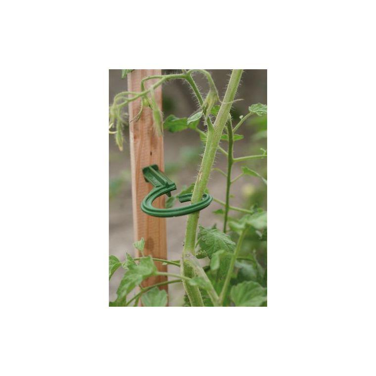 Lot de 6 attaches pour tuteur – couleur vert