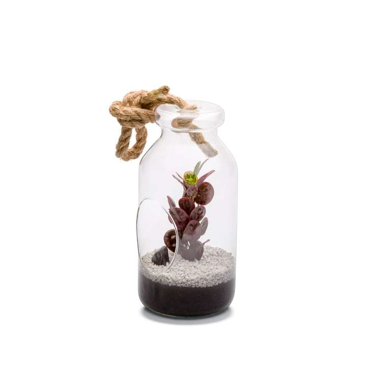 Terrarium Bottle L en verre à poser ou suspendre Ø 12 x H 25 cm 371719