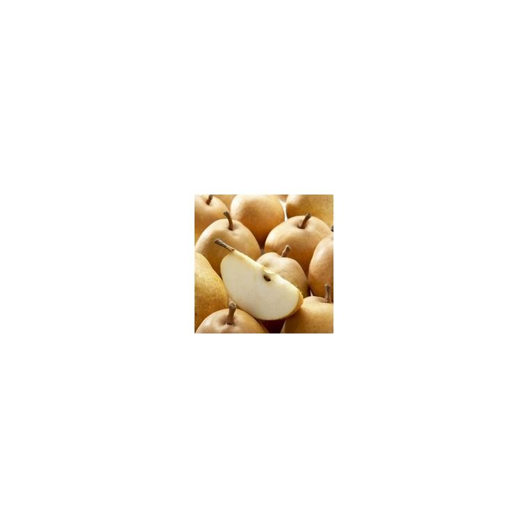 Poirier Fertilia Delbard Delwilmor bio forme Gobelet racines nues 372402