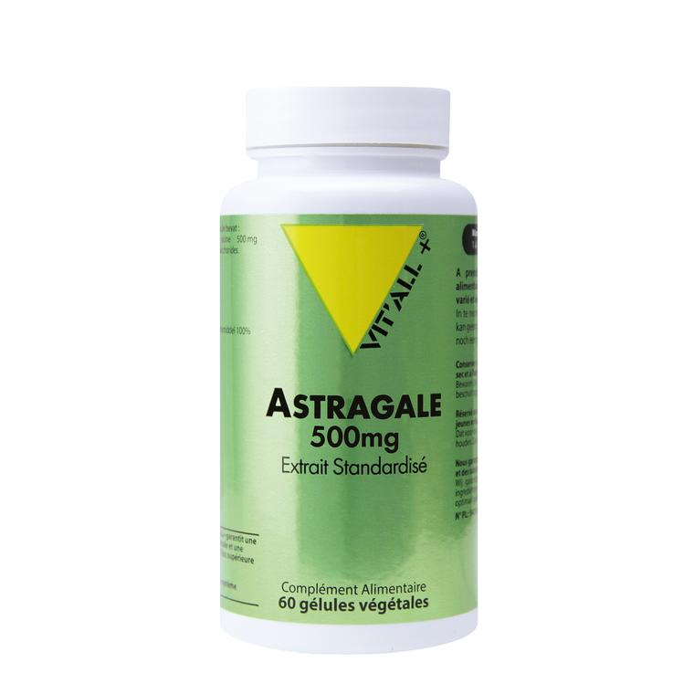 Extrait standardisé d'astragale en boite de 500 mg 375457