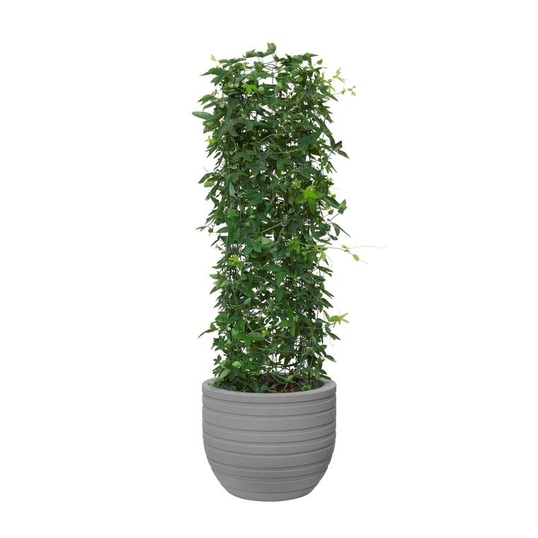 Pot rond gris en argile minéral  Allure Ribbon 27 litres 379155