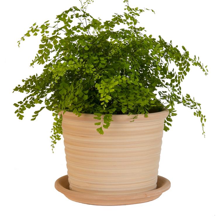 Pot strié gamme cocio liso Ø 30 cm 379454