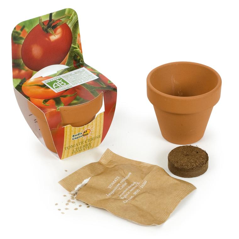 Mini kit tomate cerise Bio