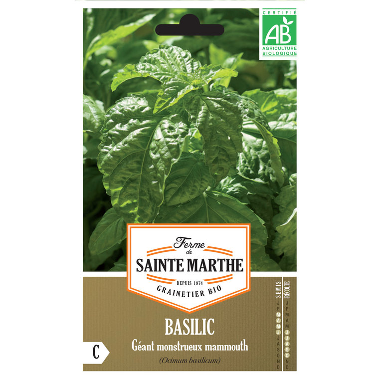 Basilic Géant Mammouth 382717