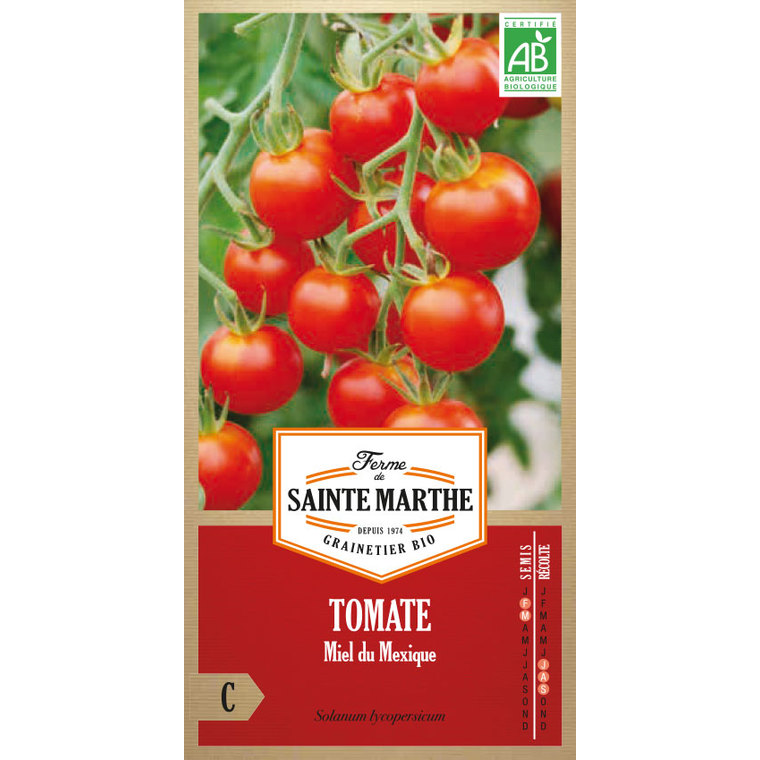 Tomate Miel du Mexique 382791