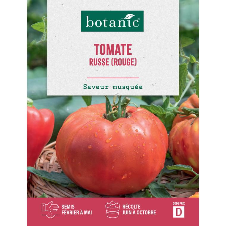 Semences potagères pour tomate russe 386132