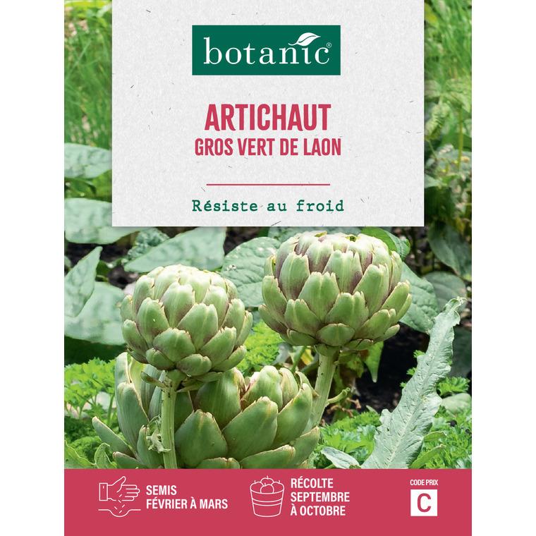 Semences potagères pour artichaut gros vert de Laon 386133