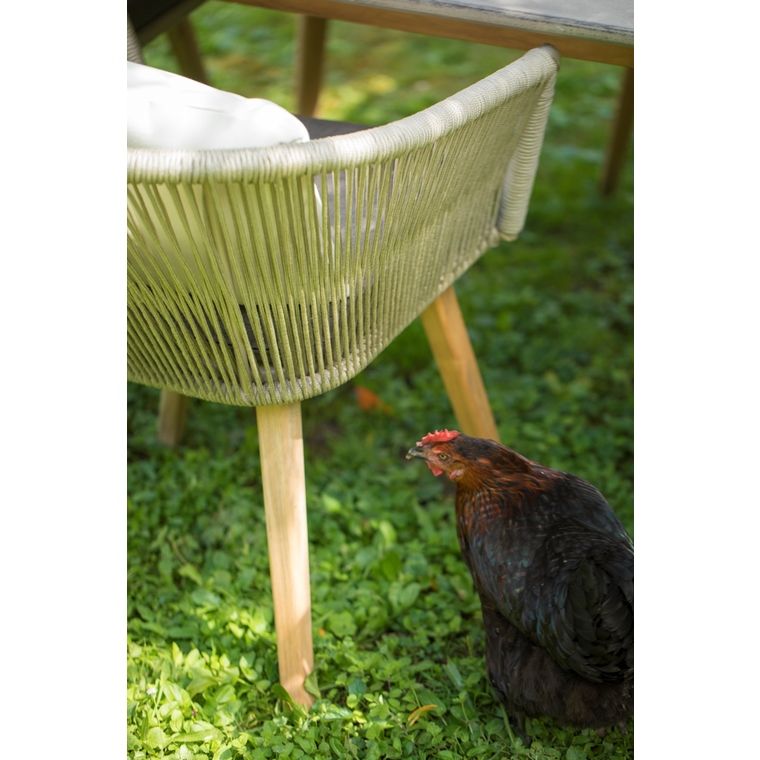 Fauteuil Orchis 386921